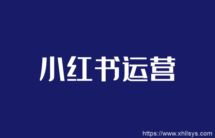 2020小红书推广引流内容全套方案(视频课程)