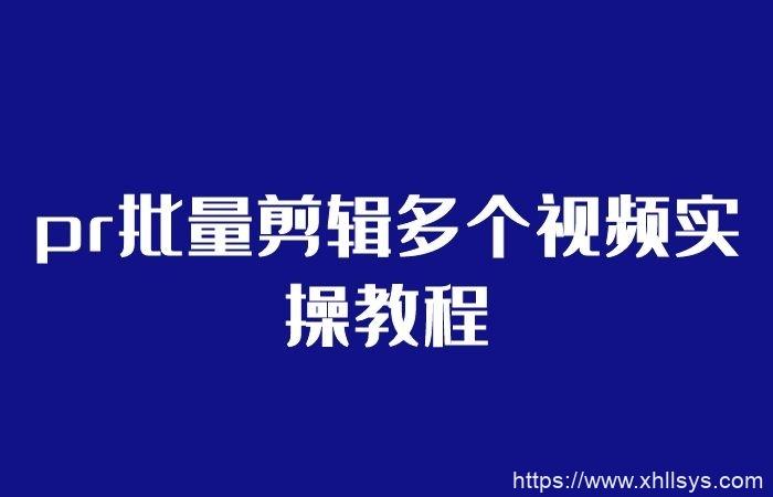 pr批量剪辑多个视频实操教程_批量伪原创教程(视频课程)